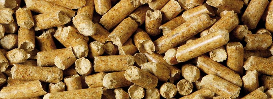 Biobrennstoffe
