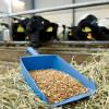 Foto-Galerie - Ob landwirtschaftliche Geräte,